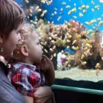 Mother with child at aquarium